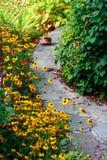 Pequeño camino de piedra en el jardín Foto de archivo libre de regalías