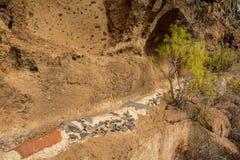 Pequeño canal para el abastecimiento de agua en Tenerife Fotografía de archivo libre de regalías