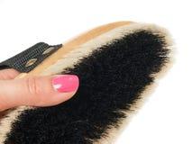 Pequeño cepillo para los caballos de la preparación con la mano en blanco Imagen de archivo