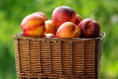Pequeño cesto de la fruta Imagen de archivo