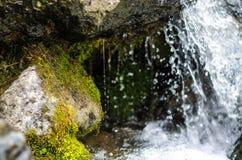 Pequeño cierre de la corriente de la montaña de la cascada para arriba Fotos de archivo