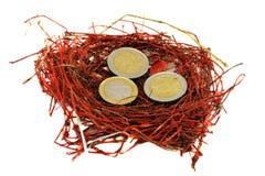 El euro rojo de la jerarquía del pájaro acuña blanco del concepto del dinero Fotografía de archivo libre de regalías