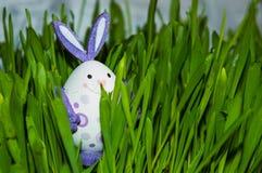 Pequeño Conejito-huevo en hierba Imagenes de archivo