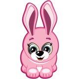 Pequeño conejo Imagen de archivo