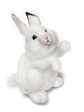 Pequeño conejo Foto de archivo
