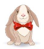 Pequeño conejo lindo con el arco rojo Imagenes de archivo