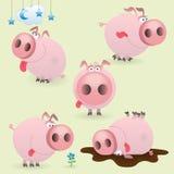 Pequeño conjunto divertido del cerdo ilustración del vector
