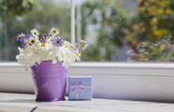 Pequeño cubo púrpura con las margaritas y la caja de regalo azul cerca del viento Fotografía de archivo