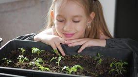 Pequeño cuidado del jardinero de la diversión para las plantas Muchacha linda del pequeño niño que planta almácigos Concepto, nat metrajes