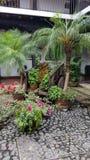 Pequeño diseño del jardín Imagen de archivo