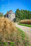 Pequeño edificio medieval viejo en campo de maíz Foto de archivo libre de regalías