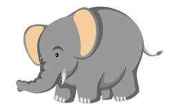 Pequeño elefante gordo divertido stock de ilustración