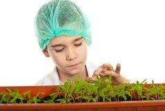 Pequeño estudiante que controla las nuevas plantas Imágenes de archivo libres de regalías