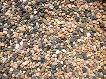 Pequeño floorl de la roca Fotos de archivo libres de regalías