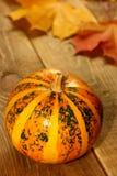 Pequeño fondo rayado de las hojas de otoño de la calabaza de la acción de gracias Imagen de archivo