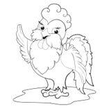 Pequeño gallo lindo Foto de archivo libre de regalías