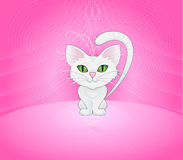 Pequeño gatito Imagen de archivo libre de regalías
