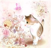 Pequeño gatito del tabby Imagen de archivo libre de regalías