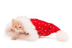 Pequeño gatito rojo en un sombrero de la Navidad Fotografía de archivo libre de regalías
