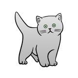 Pequeño gato Foto de archivo