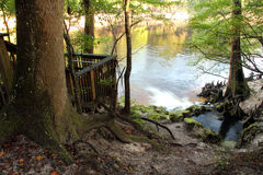 Pequeño Gem Spring Overlook Fotos de archivo