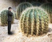 Pequeño hombre que mira el cactus grande Imágenes de archivo libres de regalías