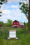 Pequeño Honey Bee Hive en una granja Imagen de archivo