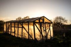 Pequeño invernadero en un jardín en verano en la puesta del sol Sun detrás de IL Foto de archivo libre de regalías