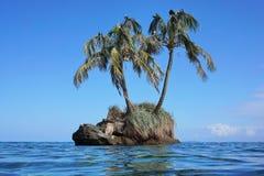 Pequeño islote con las palmeras del coco y los pájaros de mar imagen de archivo libre de regalías