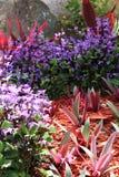Pequeño jardín Imagen de archivo