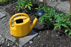 Pequeño jardín Imagen de archivo libre de regalías
