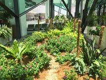 Pequeño jardín en el aeropuerto KLIA2 en Kuala Lumpur, Malasia foto de archivo libre de regalías