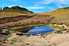 Pequeño lago Imagen de archivo