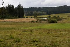Pequeño lago cerca del bosque en paisaje del otoño Fotos de archivo libres de regalías