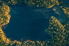 Pequeño lago del bosque en la salida del sol foto de archivo
