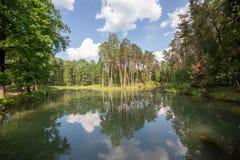 Pequeño lago en bosque de la primavera debajo del cielo nublado en paisaje granangular del día soleado Imágenes de archivo libres de regalías