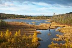 Pequeño lago en la tundra Imagenes de archivo