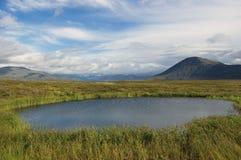 Pequeño lago en la tundra de la montaña Fotos de archivo libres de regalías
