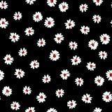 Pequeño modelo de flores 004 Foto de archivo libre de regalías