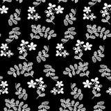Pequeño modelo de flores 021 Fotografía de archivo libre de regalías