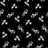 Pequeño modelo de flores 023 Fotos de archivo libres de regalías