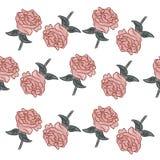 Pequeño modelo de flores color de rosa con las hojas Fotos de archivo