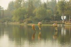 Pequeño modelo de los pescados Fotografía de archivo