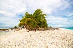 Pequeño motu tropical remoto de la isla demasiado grande para su edad con las palmas azul foto de archivo libre de regalías
