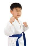 Pequeño muchacho asiático del karate en el kimono blanco Foto de archivo