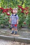 Pequeño muchacho en el fondo de las rosas Imagen de archivo