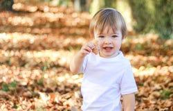 Pequeño muchacho feliz lindo que sostiene la hoja amarilla del otoño que mira la cámara al aire libre en parque fotografía de archivo libre de regalías