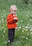 Pequeño muchacho hermoso Imagen de archivo libre de regalías