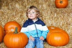 Pequeño muchacho lindo del niño que se sienta con la calabaza enorme en Halloween o el th Imágenes de archivo libres de regalías