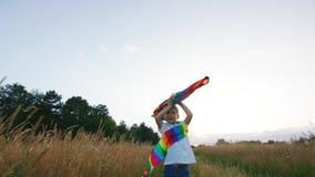 Pequeño muchacho que juega con la cometa en el campo en la puesta del sol almacen de metraje de vídeo
